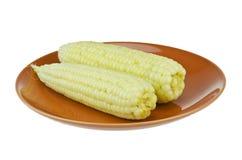 玉米四 库存图片