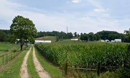 玉米国家(地区)域运输路线 免版税库存照片