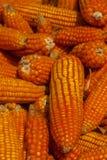 玉米堆,特写镜头 免版税库存照片