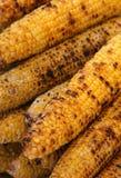 玉米墙壁 库存照片