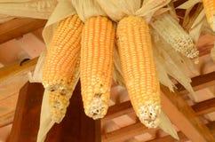 玉米壳甜多士 库存图片