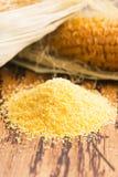 玉米少量和种子 免版税库存图片