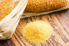 玉米少量和种子 库存照片