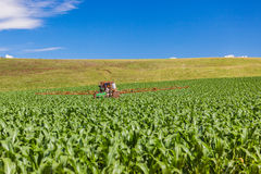 玉米庄稼喷洒的拖拉机颜色 库存照片