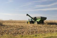 玉米搬运工 库存图片
