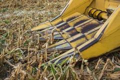 玉米收割机 库存图片