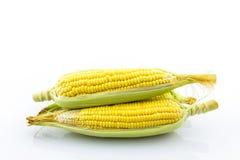 玉米新鲜有机 免版税库存图片