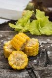 玉米新鲜的玉米棒在木背景的 顶视图 特写镜头 库存图片