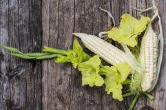 玉米新鲜的玉米棒在木背景的 顶视图 特写镜头 图库摄影
