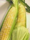 玉米新鲜的甜点 库存图片