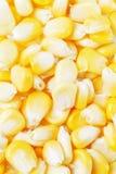玉米新鲜的甜点 免版税库存照片