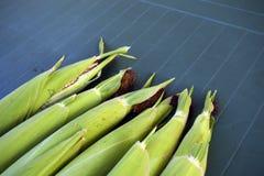 玉米新鲜的表 免版税库存照片