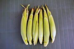 玉米新鲜的表 免版税库存图片