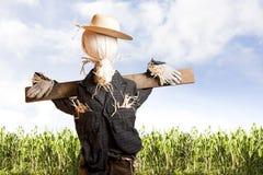 玉米日晴朗域的稻草人 免版税库存照片