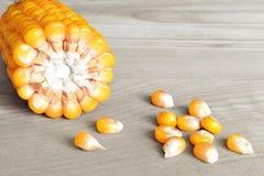 玉米棒子和玉米种子 库存图片