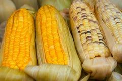 玉米棒子在供营商的摊位的待售 免版税图库摄影