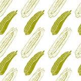 玉米棒子无缝的样式 向量例证