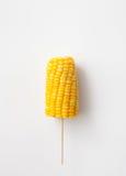 玉米棒煮沸了在一根棍子的玉米在白色背景 库存图片