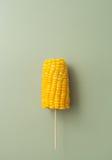 玉米棒煮沸了在一根棍子的玉米在绿色背景 库存图片