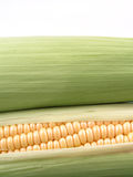 玉米棒玉米 免版税库存照片