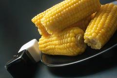 玉米棒玉米 库存图片