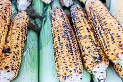 玉米油煎的和棒子 图库摄影