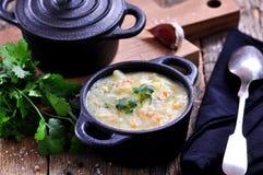 玉米渣浓汤用土豆、红萝卜、大蒜、莳萝和香菜 免版税库存图片