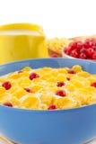 玉米片和牛奶在碗在白色 库存照片