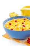 玉米片和牛奶在碗在白色 免版税库存照片