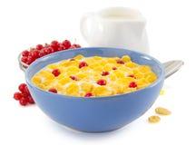 玉米片和牛奶在碗在白色 库存图片