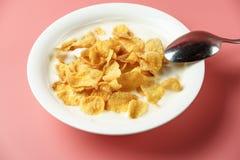 玉米片和酸奶在白色碗 库存照片