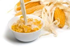 玉米片新鲜的牛奶服务 免版税库存照片