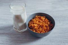 玉米片牛奶 免版税库存照片