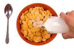 玉米片用在白色背景的牛奶填写 免版税库存图片