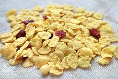 玉米片用蔓越桔 免版税库存图片