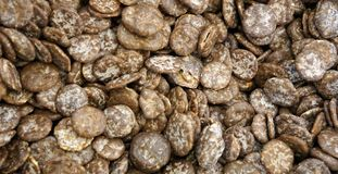 玉米片盖子在巧克力纹理背景中 库存图片