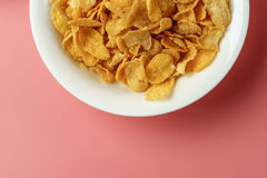 玉米片酸奶 图库摄影