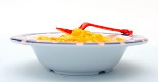 玉米片 免版税图库摄影