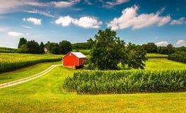 玉米田和谷仓一个农场的在南约克县, PA 库存照片