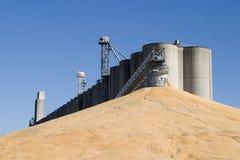玉米电梯节余 库存照片