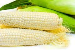 玉米白色 库存图片