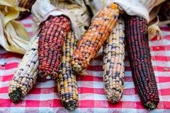 玉米的各种各样的类型在桌上的 库存照片