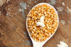 玉米种子和玉米花 免版税图库摄影