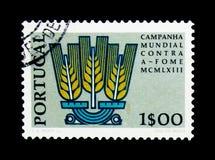 玉米穗,从饥饿竞选serie的粮食与农业组织解放,大约1963年 免版税库存图片