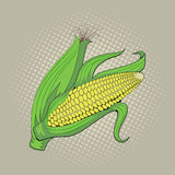 玉米穗,流行艺术减速火箭的例证 免版税库存照片