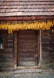 玉米线路 免版税库存照片