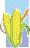玉米花 皇族释放例证