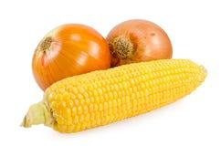 玉米葱 免版税库存照片