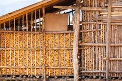 玉米谷仓 库存图片