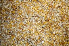 玉米麸皮,研磨玉米 免版税库存图片